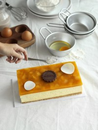 The Harvest Mango Cheese Cake 10x20