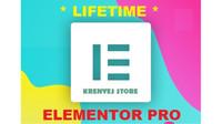 Elementor Pro & anywhere Elementor + BONUS THEME