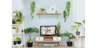 SIAP DI KIRIM Nordic Tv Table Bahan Full Kayu Solid Pinus/Jati