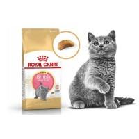 Ini Royal Canin British Shorthair Kitten 400Gram Cat Food / Makanan