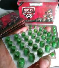 Terpopuler Eco Racing Motor