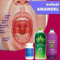 Obat Amandel Herbal Plus Suplemen Daya Tahan Tubuh Anak dan Dewasa