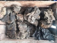 Paling Laris Batu Aquascape Eragon/Garang 1Kg Murah