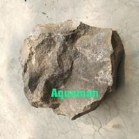 Batu Aquascape Serpentine Batu Serper tine