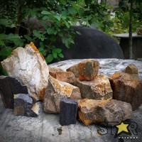 Ternama Aksesoris Aquascape Aquarium Batu Fosil Kayu Per Kg New