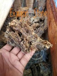Terbaru Eragon Stone/Batu Eragon Aquascape Baru