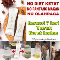 Pelangsing diet tubuh slimming jus langsing obat herbal detox slimaker