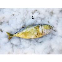 Bantal Ikan Full print
