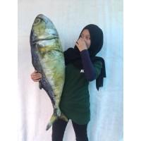 Bantal Ikan Jumbo