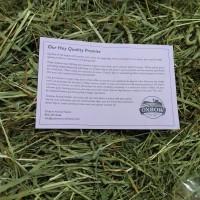 Oxbow Western Timothy Hay , Rumput , Makanan Kelinci Cavy , Repack 1kg