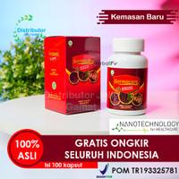 Walatra Sarang Semut Isi 100 Kapsul Mecodia 100% Ekstrak Sarang Semut