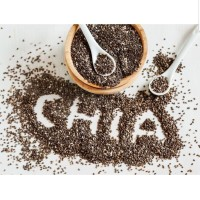 Black CHIA SEED Organic Organik 500gr