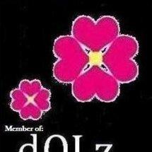 DOLz Tech