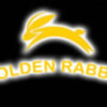 Golden Rabbit Sport