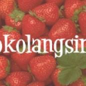 Toko Langsing