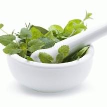 Herbal Jaya