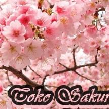 Toko Sakura