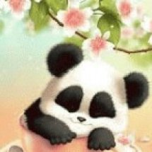 Shop Panda