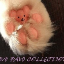 Logo PAWPAW COLLECTIONS