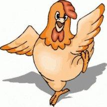 Maju Bersama PoultryShop