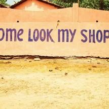 Callysta shopp
