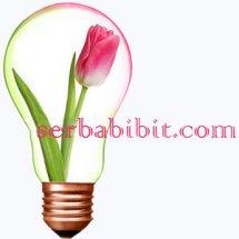 SerbaBibit.com