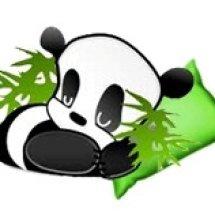 Bamboo Hydro Pad Shop