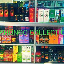 Logo Phongo Collection