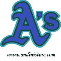 ANDINI STORE