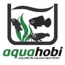 Aquahobi