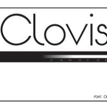 Clovisindo