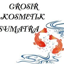 GROSIR KOSMETIK SUMATRA