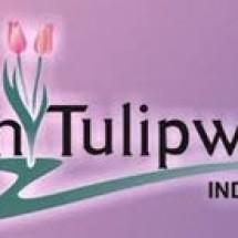 TulipwareIndonesia