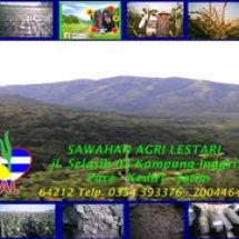 SAL Indonesia