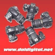 Daldigital