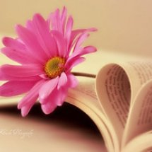 Dapur Buku Rohani