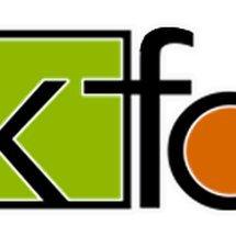 KFa Electronic