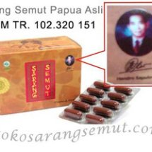 Toko Sarang Semut