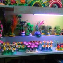 bintang tirta aquarium