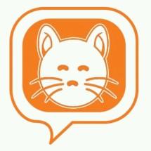 CAT's e-Book