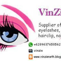 Logo Vinzieneth02