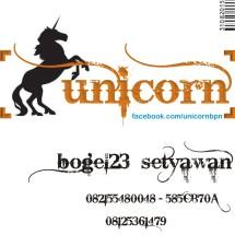 unicornbpn