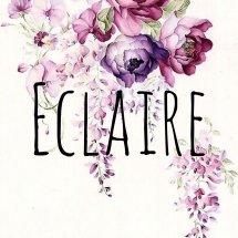 Eclaire Shop