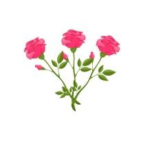 Three Roses Shop