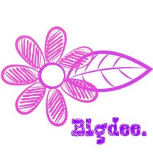 bigdee shop