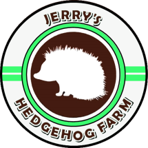 Jerry's Store