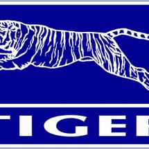 Kursi Tiger