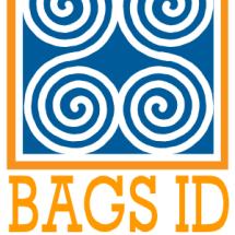 BagsIDStore