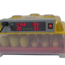 inkubator mesin tetas