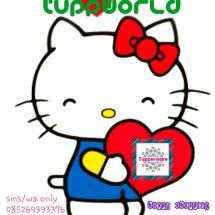 Tuppworld